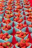 Aardbeien in manden op vertoning Stock Afbeelding