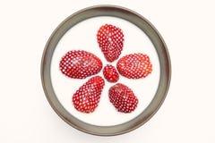 Aardbeien in melk Royalty-vrije Stock Foto