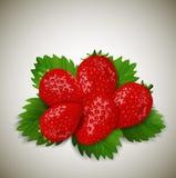 Aardbeien met bladeren Royalty-vrije Stock Afbeeldingen