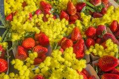 Aardbeien met mimosa Stock Afbeeldingen