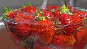 Aardbeien met water worden gewassen dat stock video