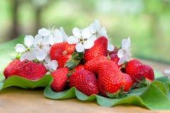 Aardbeien op bladeren royalty-vrije stock foto