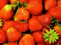Aardbeien op de lijst Stock Afbeelding