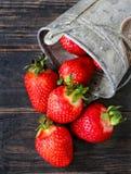Aardbeien op een donkere achtergrond Stock Fotografie