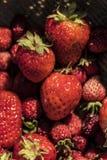 Aardbeien op een mand Stock Foto's