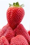 Aardbeien op een stapel Royalty-vrije Stock Afbeeldingen