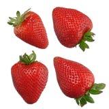 Aardbeien op wit worden geïsoleerdd dat Royalty-vrije Stock Fotografie