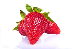Aardbeien op witte achtergrond Royalty-vrije Stock Foto