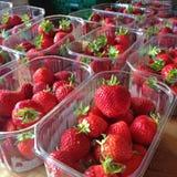 Aardbeien in plastic bakjes Stock Foto