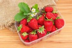 Aardbeien in plastic container, bladeren en bloemen op houten Royalty-vrije Stock Foto