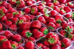 Aardbeien in plastic containers stock foto
