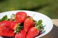 Aardbeien - sluit omhoog royalty-vrije stock afbeeldingen