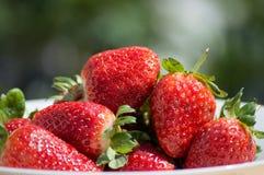Aardbeien - sluit omhoog stock foto's