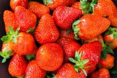 Aardbeien - sluit omhoog geschoten stock fotografie