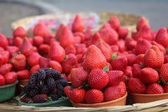 Aardbeienbraambessen Stock Foto