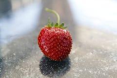 Aardbeifruit, rood en firma, van het hangen van mand vers wordt geoogst die royalty-vrije stock foto's