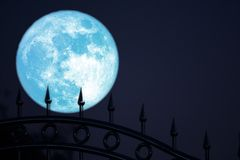 aardbeimaan op van het het silhouetroestvrije staal van de nachthemel achter het ijzeromheining royalty-vrije stock foto