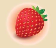 Aardbeivector, fruitvector Royalty-vrije Stock Foto