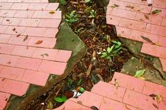 Aardbeving! Stock Foto