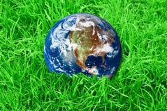 Aarde bij het groene gras Stock Afbeeldingen
