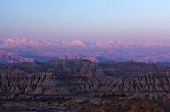 Aarde Forest Geopark, Tibet royalty-vrije stock afbeeldingen