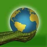Aarde gezet op groene handen Royalty-vrije Stock Foto