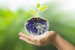 Aarde in handen - milieuconcept - de V.S., elementen van dit ima Royalty-vrije Stock Foto