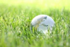 Aarde in het biogras van aardeco Royalty-vrije Stock Afbeelding
