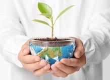 Aarde in mens de hand Stock Foto