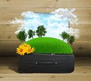 Aarde met bomen en groen gras in reiszak Stock Foto