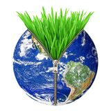Aarde met gras en pit Stock Foto