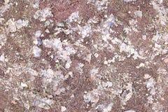 Aarde met oude bladerentextuur, kleigrond naadloos Stock Afbeelding