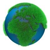 Aarde van Gras Royalty-vrije Stock Foto's