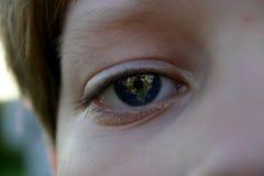 Aarde in zijn ogen Royalty-vrije Stock Foto's