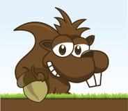 Aardeekhoorn Royalty-vrije Stock Afbeeldingen