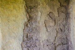 Aarden muur voor achtergrond Een aardehuis, ook als aardeberm wordt bekend, aarde beschutte huis, of het eco-huis is een architec stock fotografie