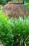 Aardewerk in garden2 Stock Foto's