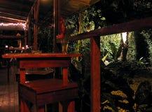 Aardflora en fauna van Costa Rica royalty-vrije stock foto's