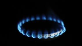 Aardgasontsteking in fornuisbrander stock video