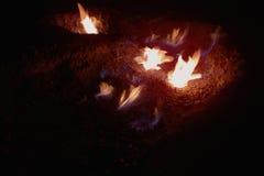 Aardgasvlammen in Andreia?u DE Jos, Roemenië Royalty-vrije Stock Foto