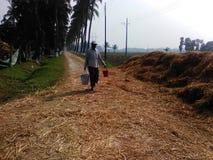 aardig ogenblik in een landbouwlandbouwbedrijf en een arbeider Stock Fotografie