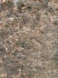 Aardige steen Stock Fotografie