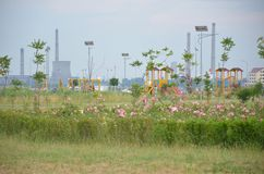 Aardoliefabriek van het het westenpark dat wordt gezien Royalty-vrije Stock Afbeelding
