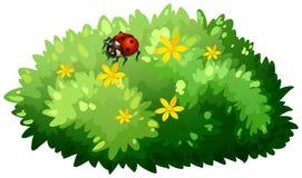 Aardontwerp met struik en insect vector illustratie