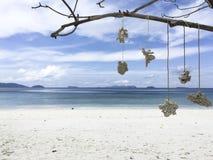 Aardornament het hangen op boom dichtbij overzeese achtergrond Stock Fotografie