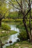 Aardpark in de lente royalty-vrije stock foto