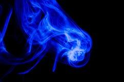 Aardsamenvatting: De Gevoelige Schoonheid en de Elegantie van een Bosje van Blauwe Rook stock afbeeldingen