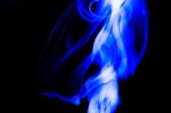 Aardsamenvatting: De Gevoelige Schoonheid en de Elegantie van een Bosje van Blauwe Rook royalty-vrije stock afbeelding
