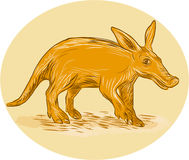 Aardvark African Ant Bear Drawing. Drawing sketch style illustration of an aardvark or African ant bear or Cape anteater, a medium-sized, burrowing nocturnal Stock Photo