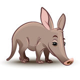 Aardvark vector illustration. A cartoon. Aardvark illustration. A cartoon illustration of a aardvark Royalty Free Stock Image